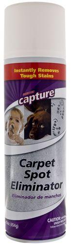 Capture Spot Eliminator - Carpet Cleaner