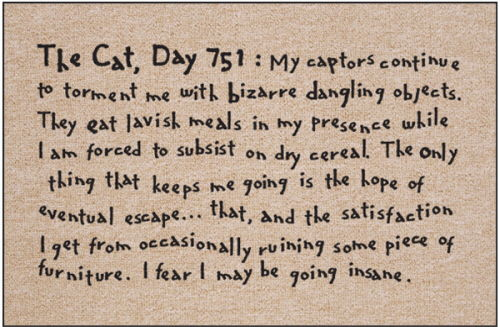 Funny Cat Themed Welcome Mat - Day 751