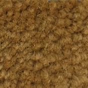 Greenfield Pumpkin Self-Adhesive Carpet Cove Base