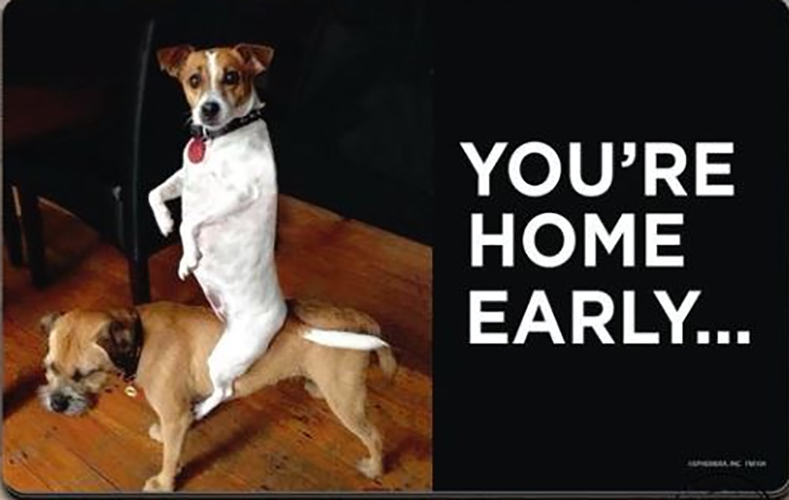 Funny Welcome Mat - You're Home Early
