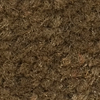 Fossil Butte Light Brown Carpet Wall Base