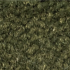 Wild sage Green Carpet Wall Base
